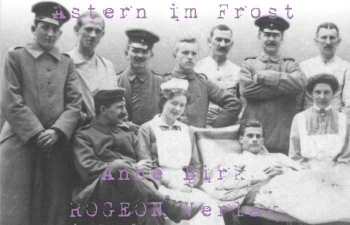 Anne-Birk-Astern-im-Frost-Roman-ROGEON-Verlag-eBook-Titelbild