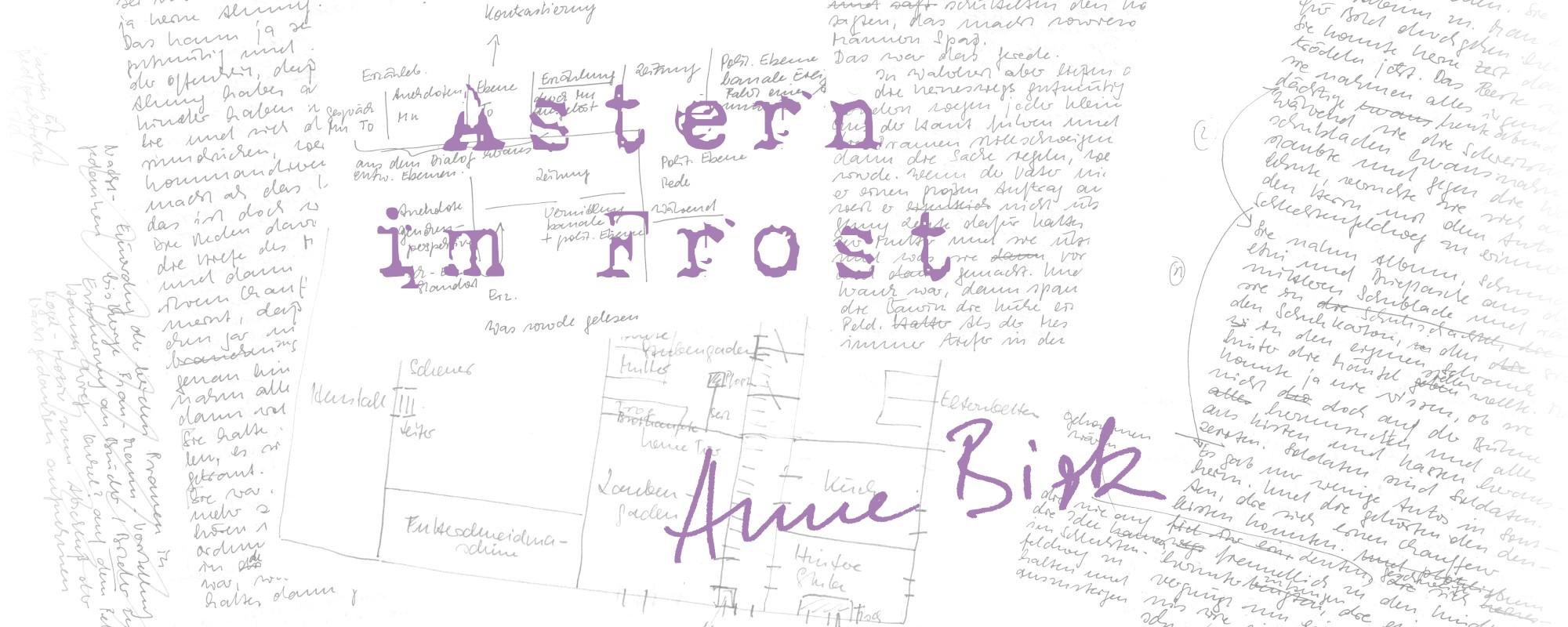 Anne-Birk-Astern-im-Frost-Schriftbild