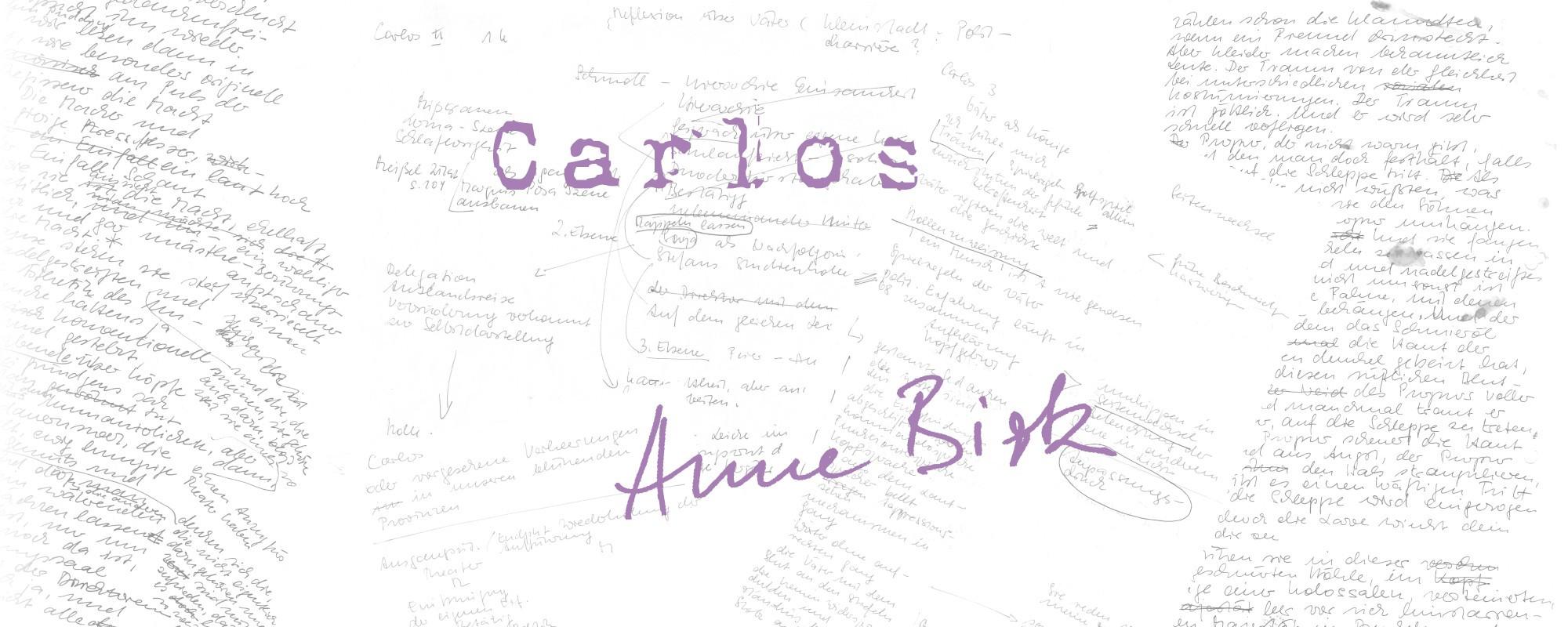 Anne-Birk-Carlos-Schriftbild