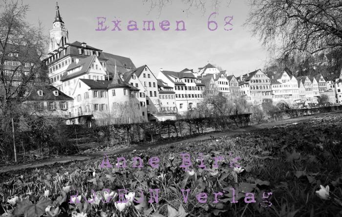 Anne-Birk-Examen-68-Erzaehlung-ROGEON-Verlag-eBook-Titelbild